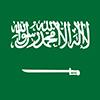 沙特电源线插头